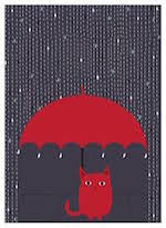 red cat in rain smllr