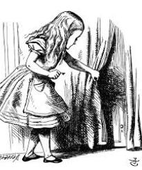 1 Alice in Trumpland
